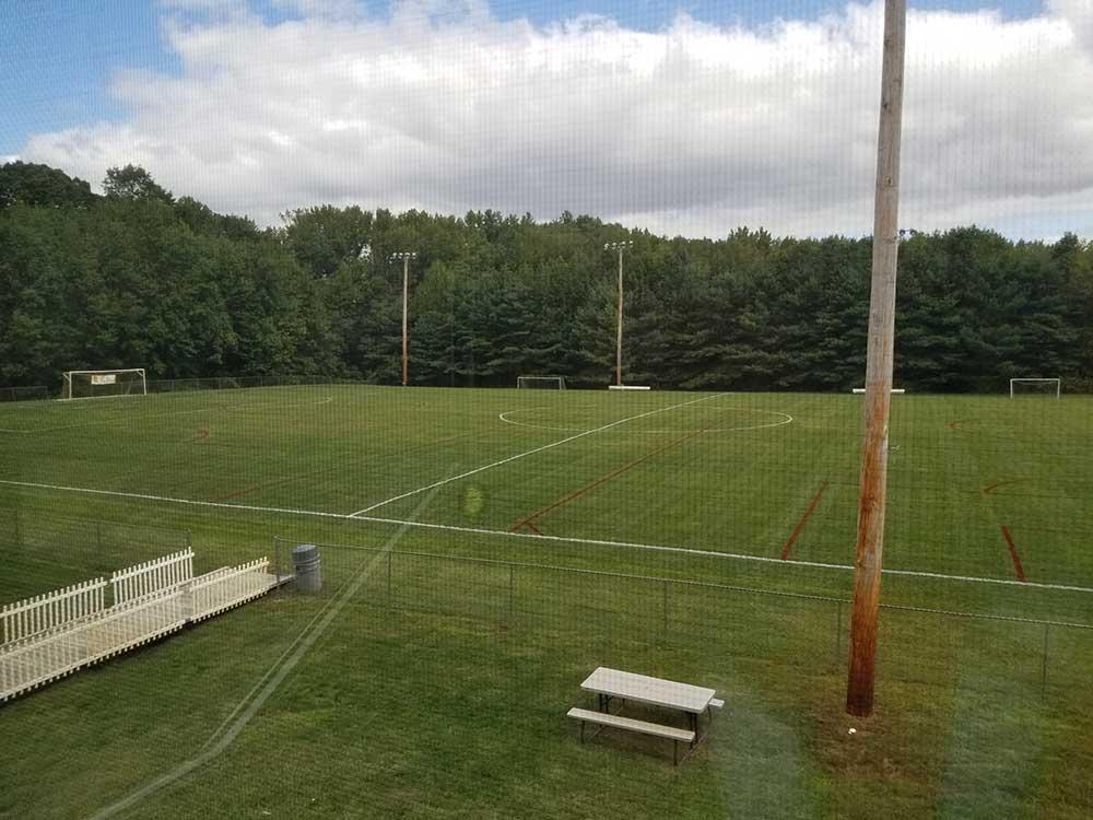 Sports Turf Maintenance Line Striping Gallery 3