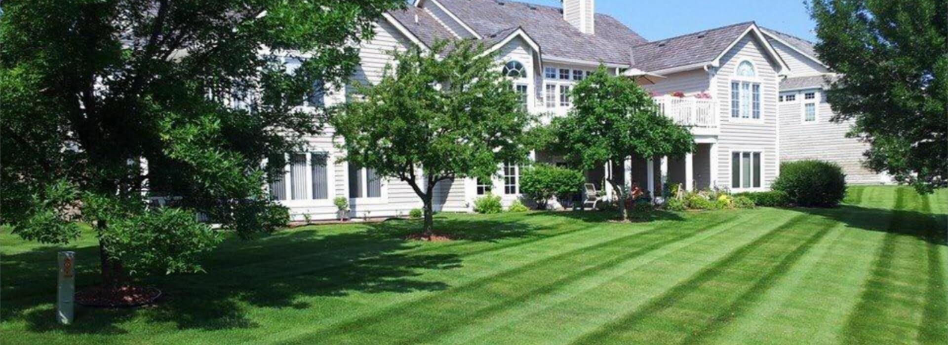 Commercial Landscape Construction Specialists