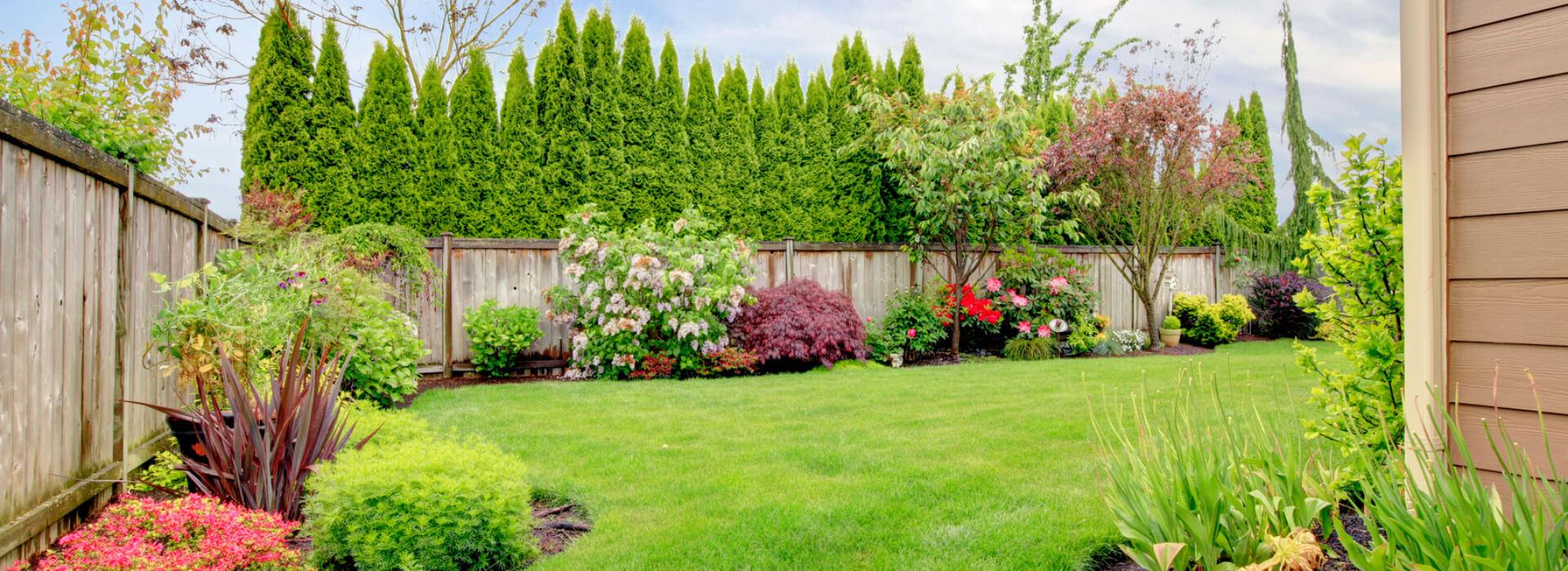 Residential Lawn Maintenance