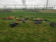 Wetland Planting & Aerator Installation Gallery 6