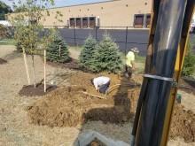 Planting Gallery 22