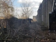 Clearing and Vegetation Removal Gallery 3